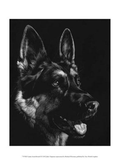 Canine Scratchboard I by Julie Chapman art print