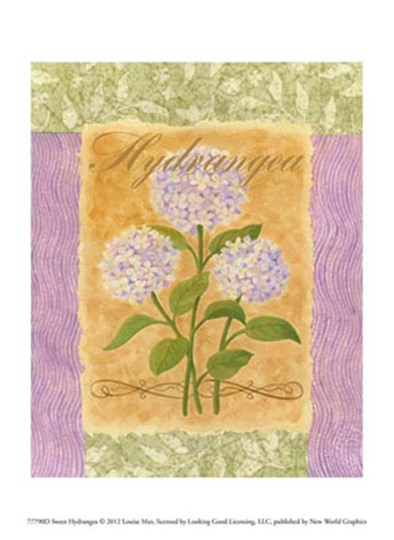 Sweet Hydrangea by Louise Max art print