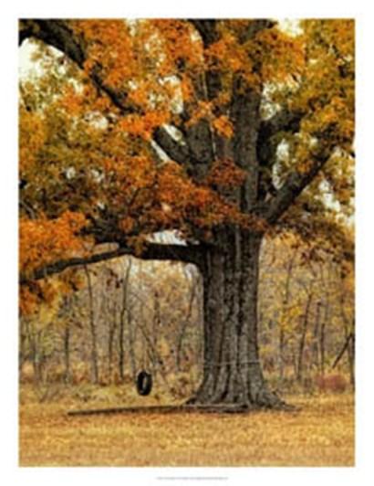 Tree Swing by Danny Head art print