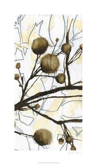 Willow Blooms II by Jennifer Goldberger art print