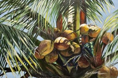 Los Cocos by Suzanne Wilkins art print