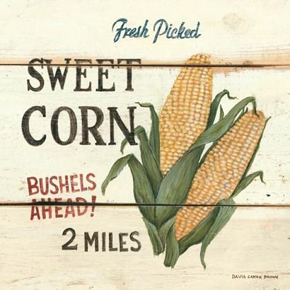 Fresh Picked Sweet Corn by David Carter Brown art print