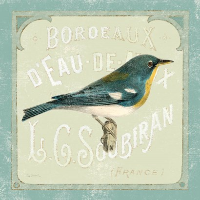 Parisian Bird I by Sue Schlabach art print
