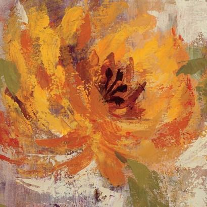 Fiery Dahlias I Crop by Silvia Vassileva art print