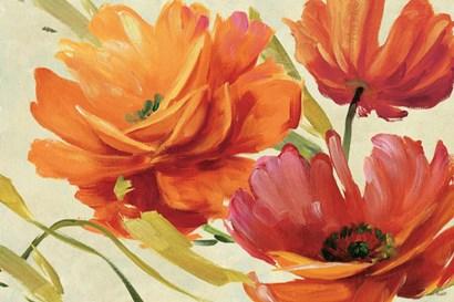 Flamboyant III by Lisa Audit art print