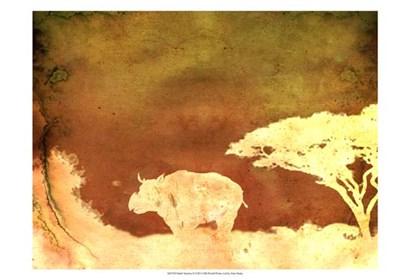 Safari Sunrise II by Pam Ilosky art print