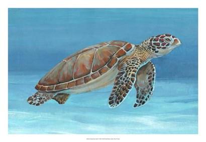 Ocean Sea Turtle I by Timothy O'Toole art print