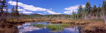 Reflection of clouds in water, Raquette Lake, Adirondack Mountains, New York State, USA by Panoramic Images art print