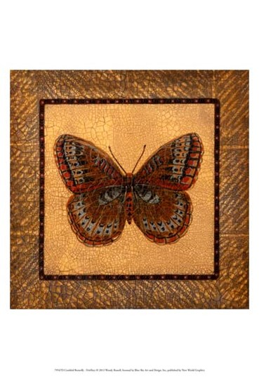 Crackled Butterfly - Fritillary by Wendy Russell art print