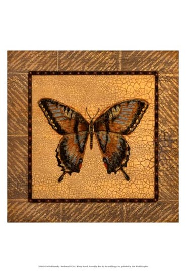 Crackled Butterfly - Swallowtail by Wendy Russell art print