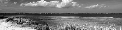 Shore Panorama VII by Jeff Pica art print