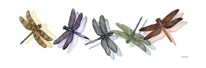 Wings of Splendor II by Wendy Russell art print