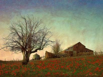Barn on the Hill by Chris Vest art print
