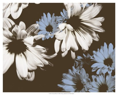Chocolate Bloom I by A. Project art print