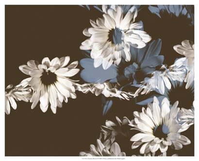 Chocolate Bloom II by A. Project art print