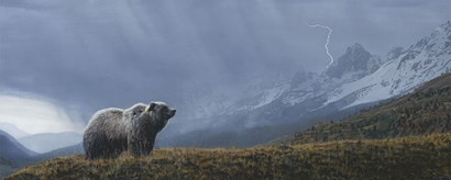 Stormwatch - Grizzly (detail) by Terry Isaac art print