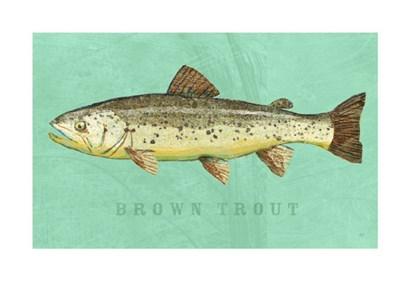 Brown Trout by John W. Golden art print