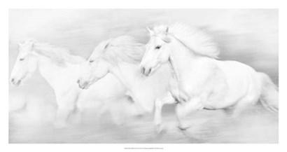 All the White Horses by PHBurchett art print