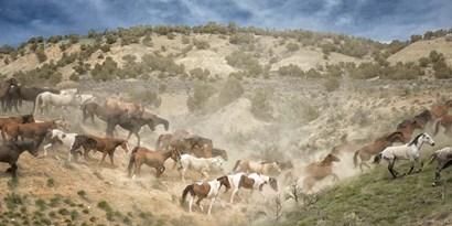 Moving the Herd by PHBurchett art print