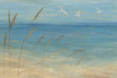 Seagrass Seagulls by Cynthia Coulter art print