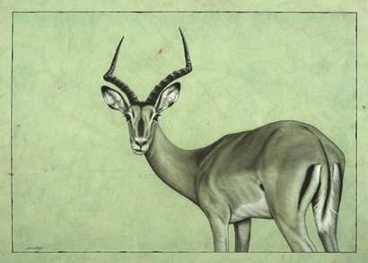 Impala by James W. Johnson art print