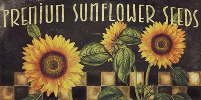 Sunflowers by Color Bakery art print