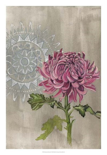 Bohemian Botanical I by Naomi McCavitt art print