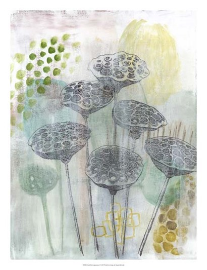 Seed Pod Composition I by Naomi McCavitt art print