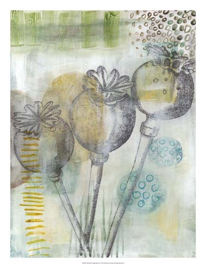 Seed Pod Composition II by Naomi McCavitt art print