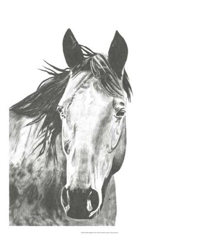 Wildlife Snapshot: Horse I by Naomi McCavitt art print