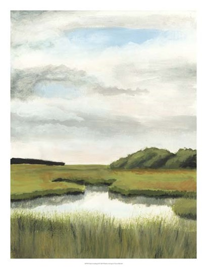 Marsh Landscapes II by Naomi McCavitt art print