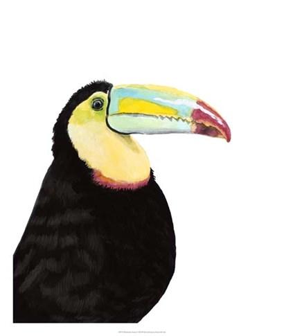 Watercolor Toucan by Naomi McCavitt art print