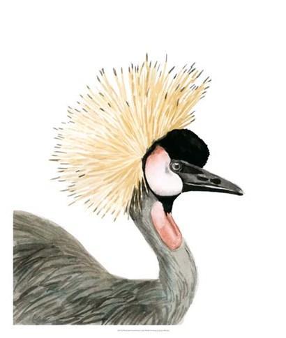 Watercolor Crested Crane by Naomi McCavitt art print