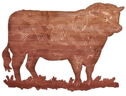 Bull Cut Out by RetroPlanet art print