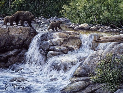 Entiat Falls-Grizzly Family by Jeff Tift art print