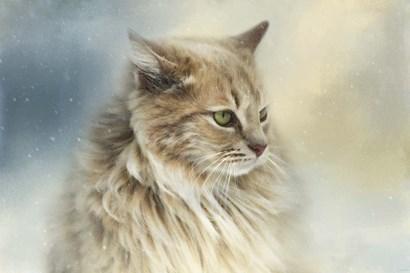 Watching Snow Fall by Jai Johnson art print