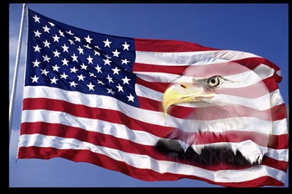 Bald Eagle on Flag by Panoramic Images art print