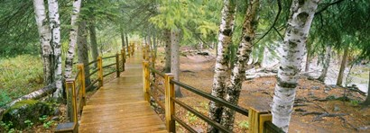 Gooseberry River, Gooseberry Falls State Park, Minnesota by Panoramic Images art print