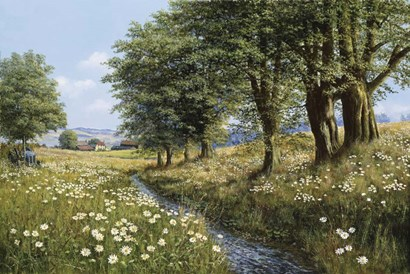 Beeches And Daisies by Bill Makinson art print