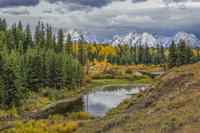 Gtnp Fall Color With Mountains by Galloimages Online art print