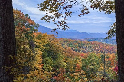 Window To The Smoky Mountains by Galloimages Online art print