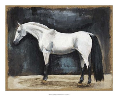 Equestrian Studies VI by Naomi McCavitt art print