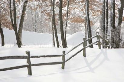Winter Fence & Shadow, Farmington Hills, Michigan 09 by Monte Nagler art print