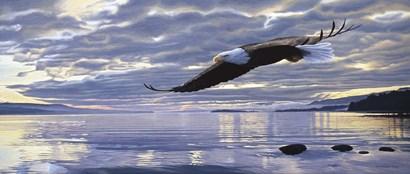 Dawn Flight by Ron Parker art print