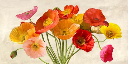 Poppies in Spring by Luca Villa art print
