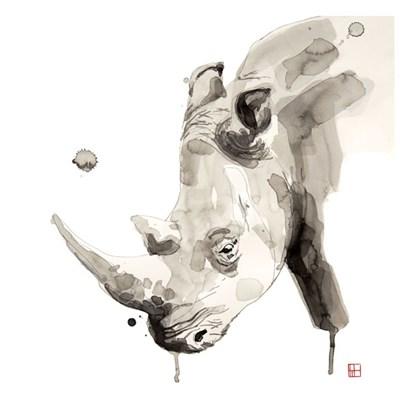 Rhino by Philippe Debongnie art print