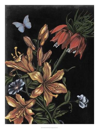 Dark Floral II by Naomi McCavitt art print
