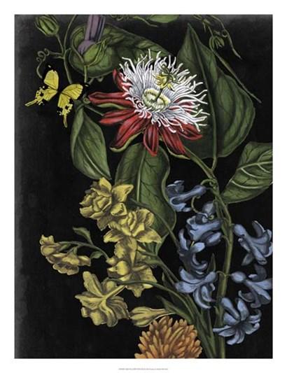 Dark Floral III by Naomi McCavitt art print