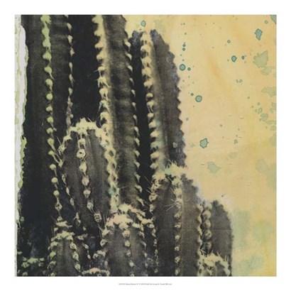 Desert Dreams IV by Naomi McCavitt art print