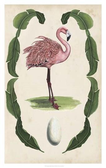 Antiquarian Menagerie - Flamingo I by Naomi McCavitt art print